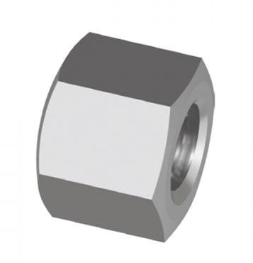 Stainless Hex Cap Nut